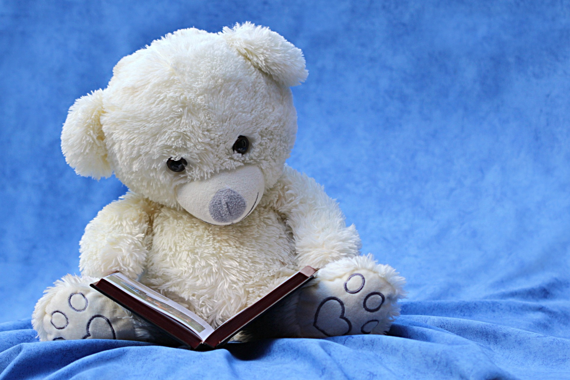 Saya dan Membaca